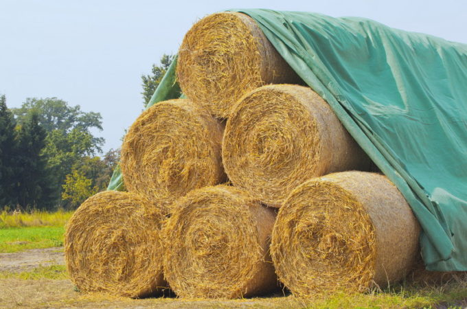 Shortages Making Proper Hay Storage Even More Important